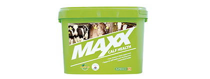 Maxx Calf Health Block